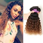 Soft Feel Hair 8A Brazilian Kinky Curly Ombre Hair Extensions 3 Bundles 2 Tone